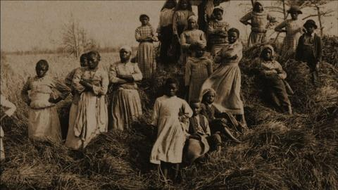 The African Americans: Many Rivers to Cross -- Priscilla, a Slave