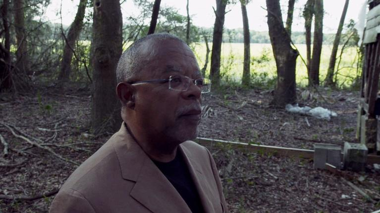 The African Americans: Many Rivers to Cross: The African Americans: Many Rivers to Cross - Trailer