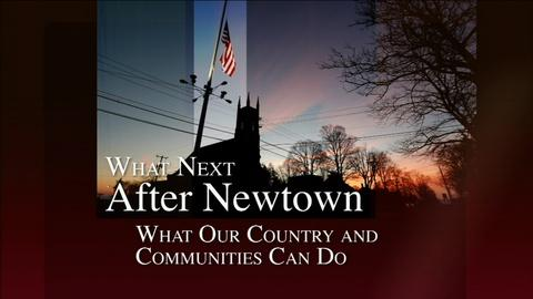 After Newtown -- What Next After Newtown