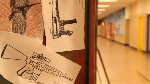 After Newtown -- The Path to Violence