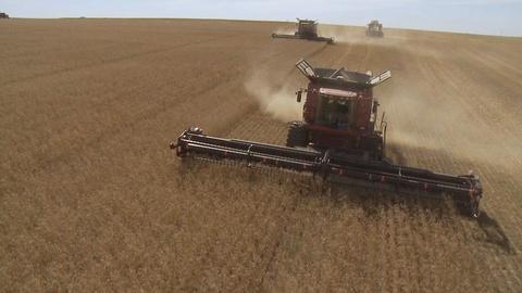S1 E1: Harvest Time