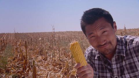 America Revealed -- Corn