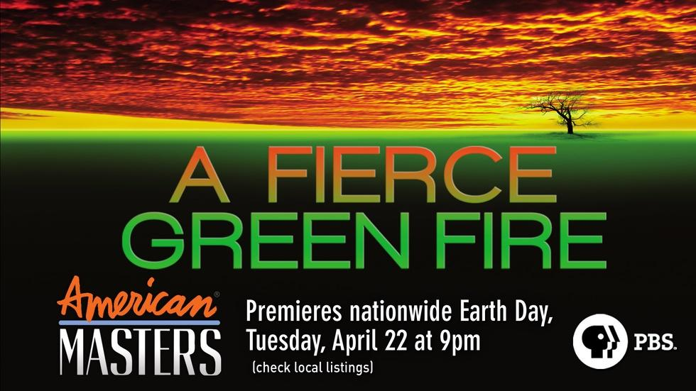 A Fierce Green Fire - Trailer image