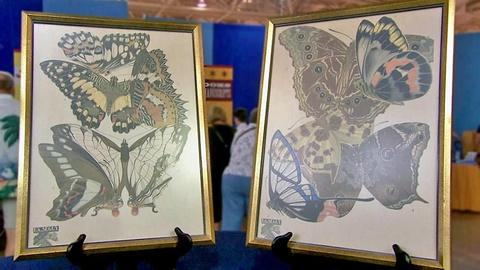 Antiques Roadshow -- S16 Ep16: Appraisal: Seguy Butterfly Prints, ca. 1928