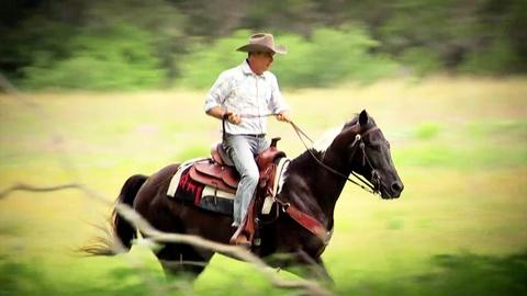 Antiques Roadshow -- S19 Ep6: Field Trip: Antique Mexican Parade Saddles