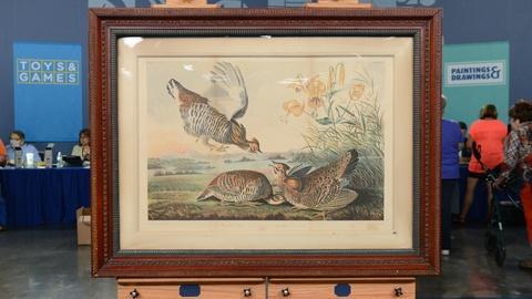 Antiques Roadshow -- S20 Ep3: Appraisal: 1860 J. J. Audubon Chromolithograph