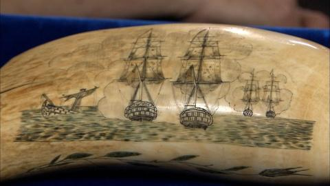 Antiques Roadshow -- S20 Ep14: Appraisal: Scrimshaw Whale Tooth, ca. 1850