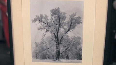 Antiques Roadshow -- S20 Ep23: Appraisal: Ansel Adams Special Edition Print, ca.