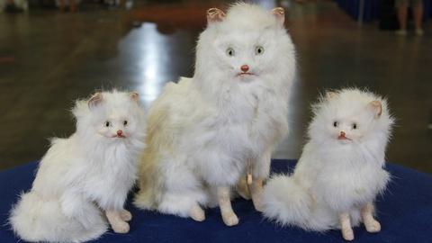 Antiques Roadshow -- S21: Web Appraisal: German Cat Family, ca. 1905