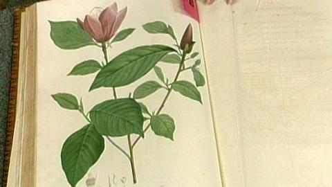 """Antiques Roadshow -- S16 Ep26: Appraisal: """"Jardin de la Malmaison"""" Book"""