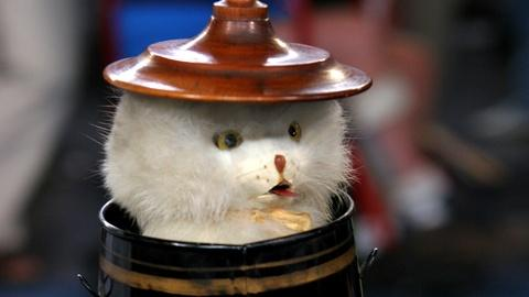 "Antiques Roadshow -- S16 Ep19: Appraisal: Ives Clockwork ""Kitten in a Can,"" ca. 1"