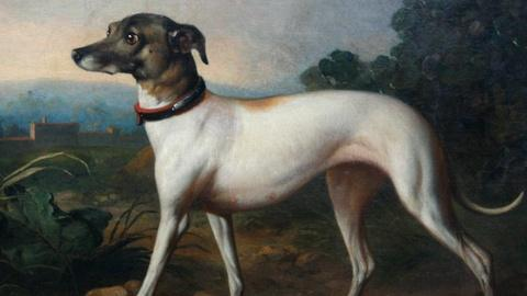 Antiques Roadshow -- S16 Ep19: Appraisal: 19th-Century British Dog Portrait