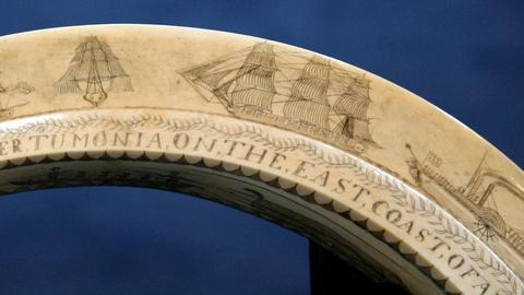 Antiques Roadshow -- S12 Ep12: Appraisal: Scrimshaw Hippo Tooth, ca. 1840