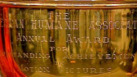 Antiques Roadshow -- S17 Ep22: Appraisal: American Humane Assoc. Trophy