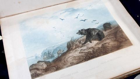 Antiques Roadshow -- S17 Ep21: Appraisal: Maximilian & Bodmer Atlas, 1842-43