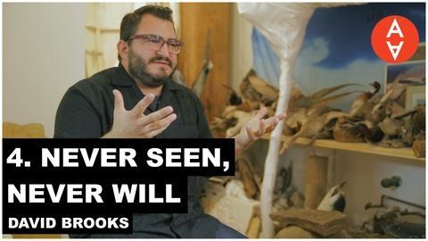 The Art Assignment -- Never Seen, Never Will - David Brooks