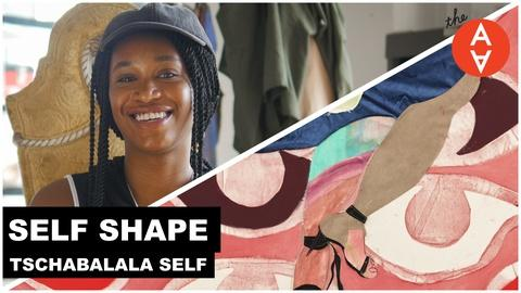 The Art Assignment -- Self Shape - Tschabalala Self