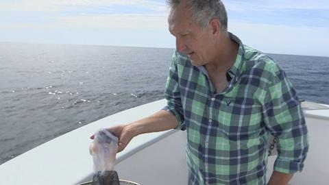 Big Blue Live -- Mark Carwardine Pulls Out a Mystery Object from the Sea
