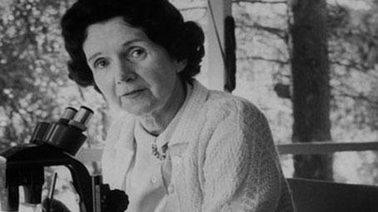 Bill Moyers: The Journal: Rachel Carson's Legacy