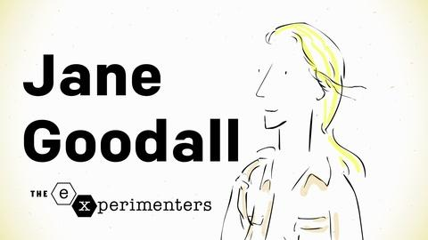 Blank on Blank -- Jane Goodall on Instinct