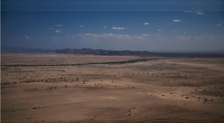 Bones of Turkana: Extended Trailer