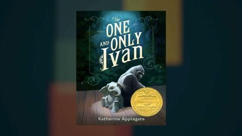 Book View Now -- Katherine Applegate Interview at Miami Book Fair
