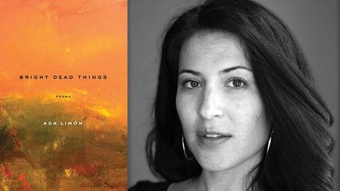 Book View Now -- Ada Limón | AWP Book Festival 2016