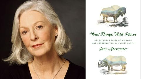 Book View Now -- Jane Alexander at 2016 Miami Book Fair