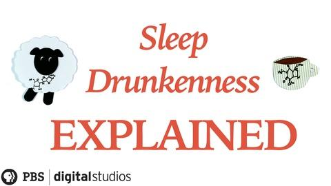 BrainCraft -- Sleep Drunkenness Explained