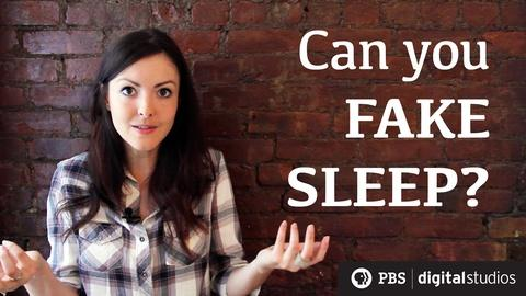BrainCraft -- Can You Fake Sleep?