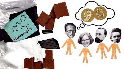 BrainCraft -- Can Chocolate Make You Smarter?