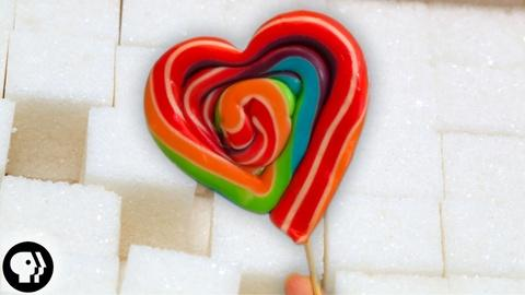BrainCraft -- S2 Ep24: Why Do We Love Sugar?