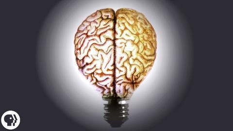 BrainCraft -- The Secret to Creativity