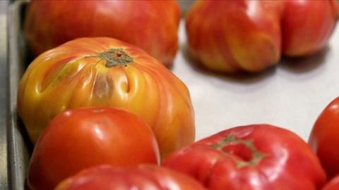 A Chef's Life -- Tomato Pie