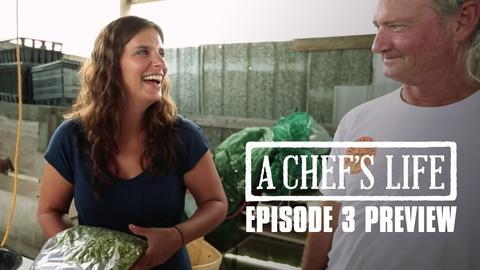 A Chef's Life -- S2 Ep3: Preview: R-E-S-P-E-C-T the Butterbean