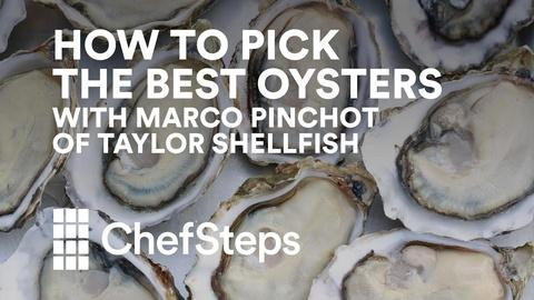 ChefSteps -- Choosing Oysters