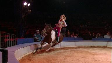 Circus Physics: Centripetal Acceleration