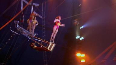 Circus Physics: Linear Momentum