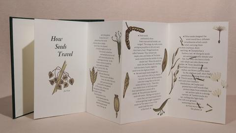 Craft in America -- S8: Catherine Alice Michaelis on her book How Seeds Travel