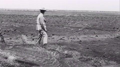 The Dust Bowl -- Environmental Catastrophe