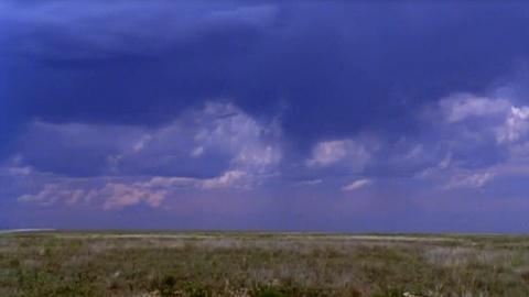 The Dust Bowl -- Caroline Henderson