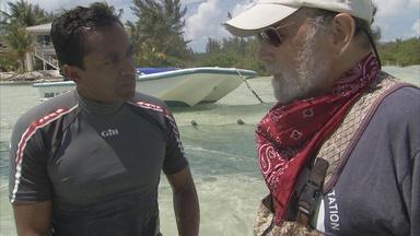 An Interview with Renowned Shark Scientist Doc Gruber