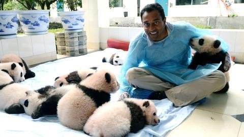 S1 E1: China's Panda Problem