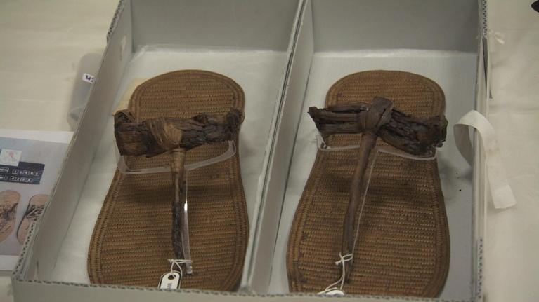 Egypt's Treasure Guardians: King Tut's Treasures