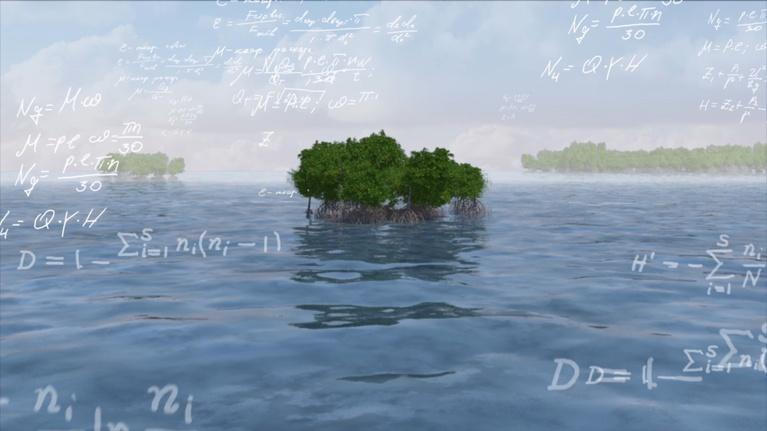 E.O. Wilson - Of Ants And Men: Island Apocalypse