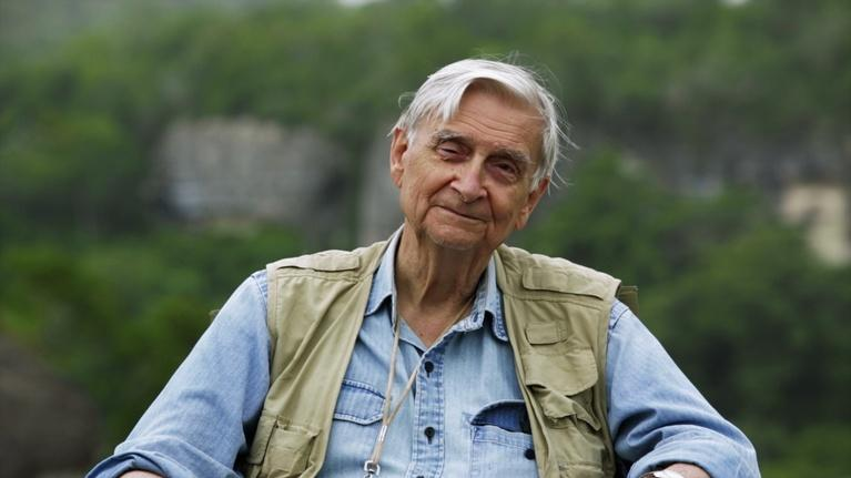 E.O. Wilson - Of Ants And Men: Becoming Human
