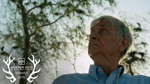 E.O. Wilson of Ants and Men