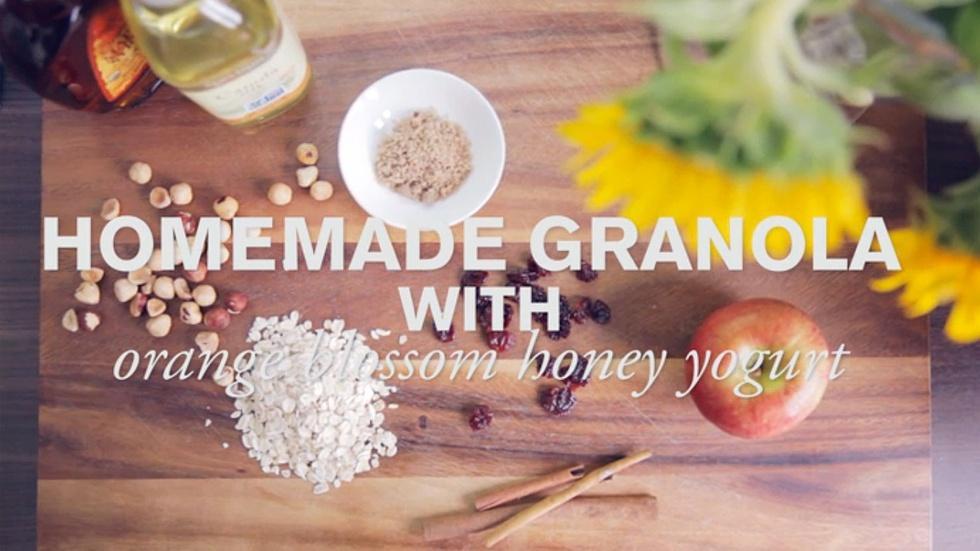 Homemade Granola with Orange Blossom Honey Yogurt  image