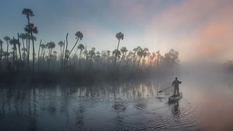 The Forgotten Coast: Return to Wild Florida -- Official Trailer