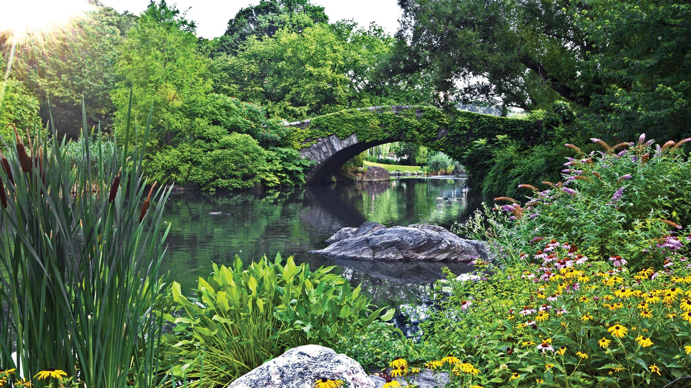 Video Frederick Law Olmsted - Preview | Watch Frederick Law Olmsted Designing America Online ...